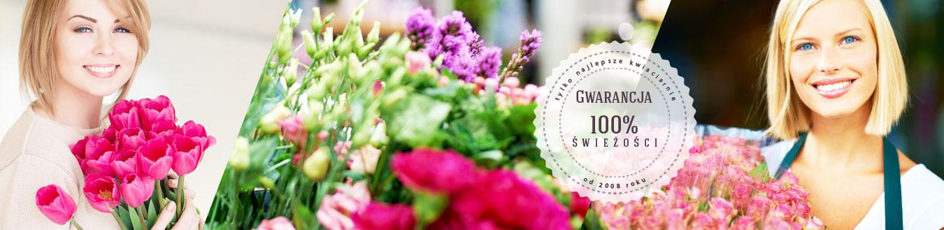 kwiaciarnia_gliwice